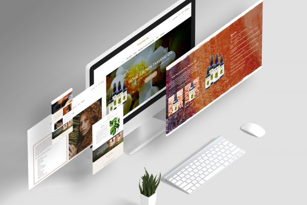 Affordable Website Design & Development